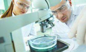 Швейцарские учёные создали материал со свойствами сухожилий