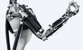 Ученым удалось создать сильную искусственную мышцу