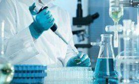 Безопасный и простой способ получения стволовых клеток