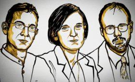 Нобелевскую премию по экономике присудили за «лекарство от бедности»