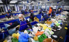 Эксперты предложили создать в России пункты компостирования отходов
