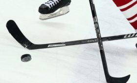 Как передача Дадонова помогла «Флориде» победить «Сент-Луис» вматче НХЛ